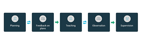 The process - MOSO, Mentoring and Observation Software