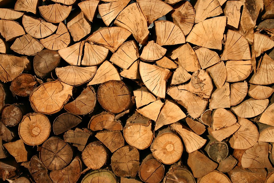 A pile of firewood. Photo.